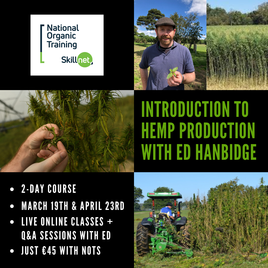 Introduction to Hemp Production with Ed Hanbidge provided by NOTS.ie